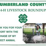 4H - Cumberland County - Community Outreach